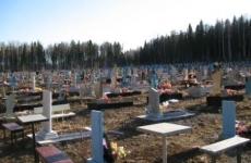 Кладбище в Малиновке разрушили маленькие дети