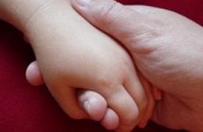 Сведения о недобросовестных родителях (опекунах) будут содержаться в едином реестре