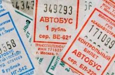 В Подмосковье запретили высаживать детей без билета