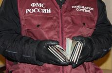 Кингисеппская городская прокуратура провела проверку исполнения миграционного законодательства