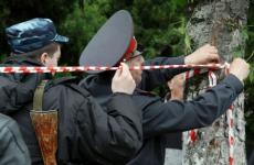 В Республике Алтай полицейские обезвредили, найденную в населенном пункте, гранату