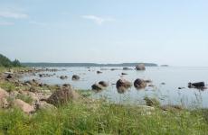 Ленинградская межрайонная природоохранная прокуратура приняла участие в акции «Берег чистоты»