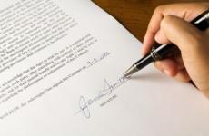 Прокуратурой проведена проверка соблюдения действующего законодательства при предоставлении администрацией Приозерского муниципального района земельных участков