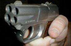 В Ленобласти 2-летний мальчик выстрелил себе в голову из пистолета
