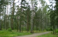 Земля из 15 солдатских захоронений Приамурья отправится в Главный храм вооружённых сил России
