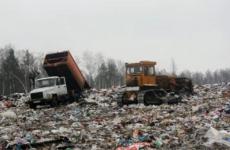 Тосненская городская прокуратура признала законным возбуждение уголовного дела в отношении директора ГУПП «Полигон «Красный Бор»