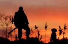Определены особенности осуществления любительской и спортивной охоты в отношении охотничьих ресурсов, находящихся в полувольных условиях и искусственно созданной среде обитания