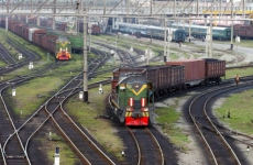 «Серёга своё отжил»: мужчина привязал собаку к рельсам, чтобы её сбил поезд