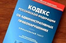 В Сольцах  местный житель оштрафован за оскорбление бывшей супруги