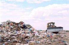 Кингисеппской городской прокуратурой выявлены факты размещения несанкционированных свалок на землях лесного фонда