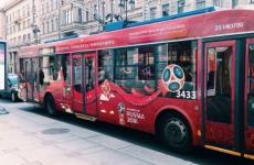 Гатчина вошла в ТОП-5 самых популярных у туристов пригородов ЧМ-2018