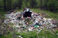 В Кировском районе прокуратура потребовала убрать несанкционированные свалки в 10 муниципальных образованиях